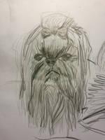 dog Chewbacca  by ikafox