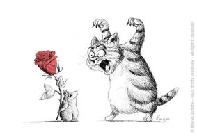 Happy Valentine ! by MarekDolata