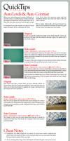 QuickTips: AutoLevels-Contrast by lukeroberts