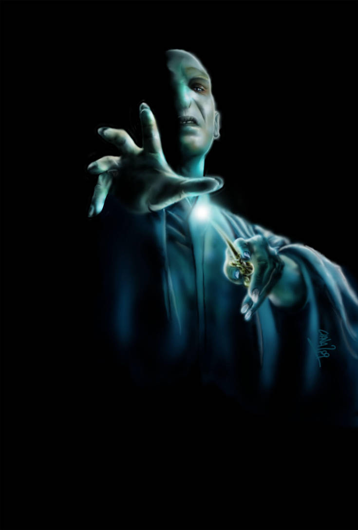 Lord Voldemort by soul-whisper