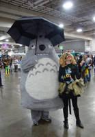I Met Totoro. :D by Silvia1826