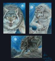 Werewolf ACEOs by Atan