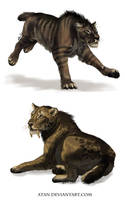Ancient Cats by Atan