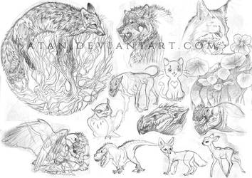 Another Sketch Dump by Atan