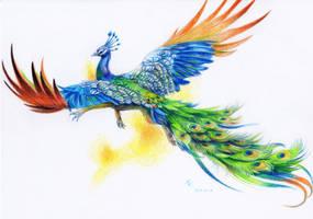 Peacock Griffin by BrassDragon