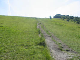 Box Hill 6 by raindroppe