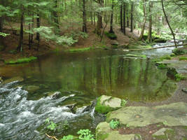 Forest River 2 by raindroppe
