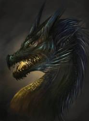 Dragon by o-Sehaliah-o