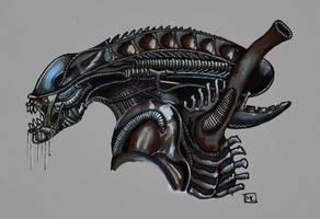 Alien Warrior by YouCannotFalter