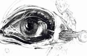 Eyefisheye 2017 new work in process by CharaSweetCheeks