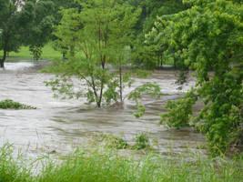 Thomas Park Flooded 2 by mygreymatter