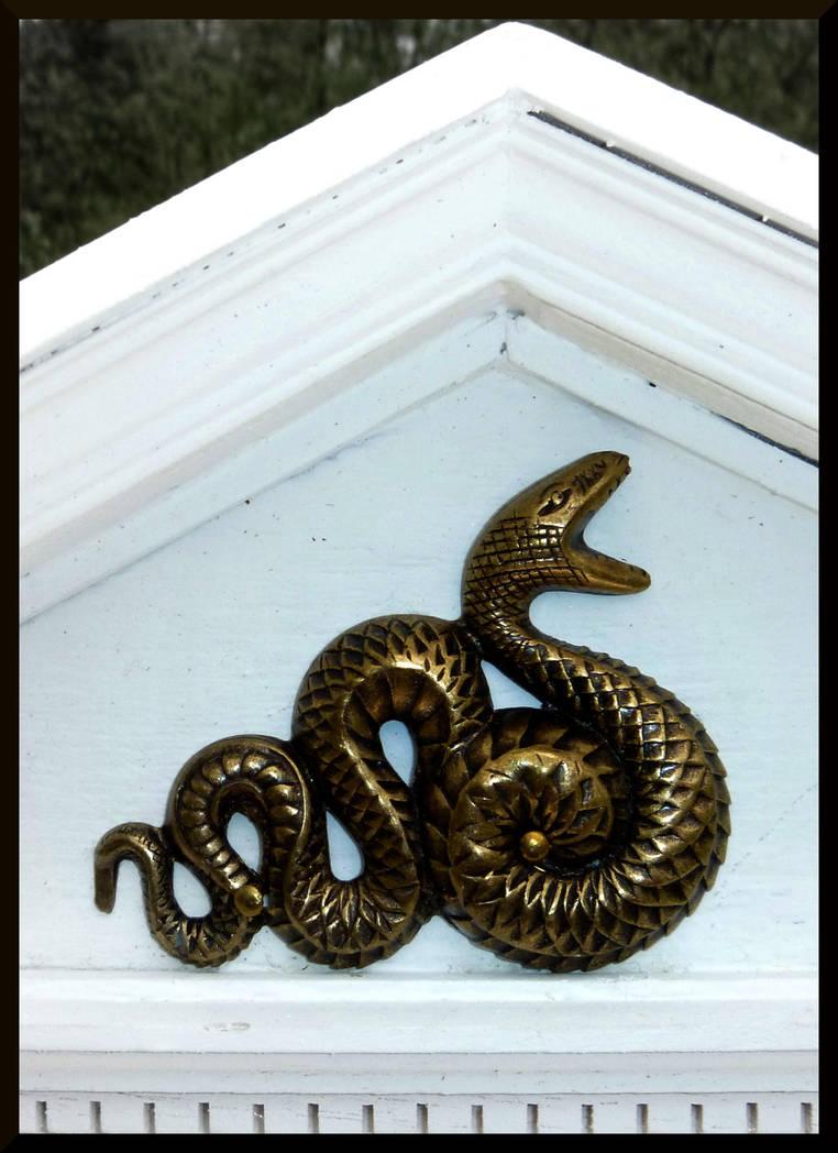 Snake by mygreymatter