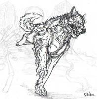 Diablo,rough by riard