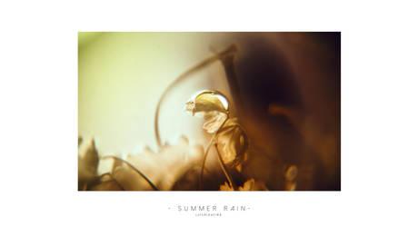 Summer rain 3 by cimmx