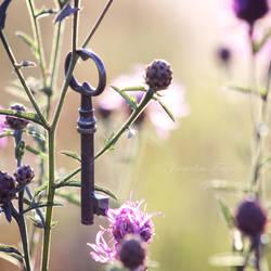 Key to my Heart by PetalDreams