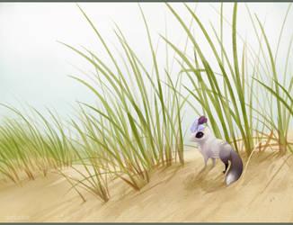 Little Wanderer by DaffoDille