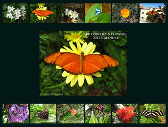 Butterflies and Flowers Calendar by DreamOfNovember