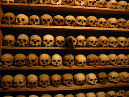 Monk Skulls by isostatic