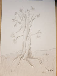 Tree Sketch by NannocDesign