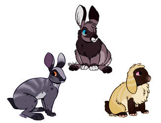 Adoptable Rabbits -CLOSED- by LysAdopts