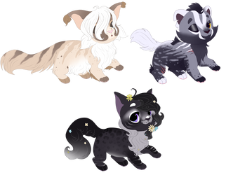 Kittens for adopt-Open/OTA by LysAdopts