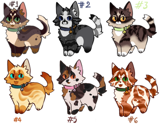 Kitty adoptable batch-Open by LysAdopts