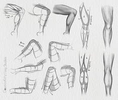 Leg Studies by CosmosKitty
