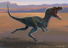 Albertosaurus by Zainy7
