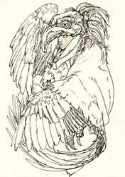 Dual Human - Harpie by Pen-scribble
