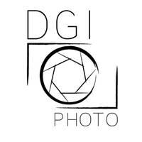 Logo DGI Photo by creationbegins