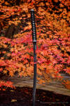 samurai by wroquephotography