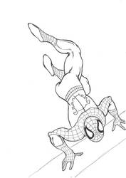 Spiderman by firefly-R