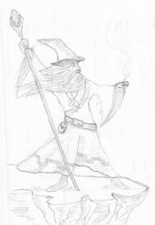Wizard by firefly-R
