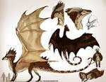 Redtailed Dragoness ref by grzanka
