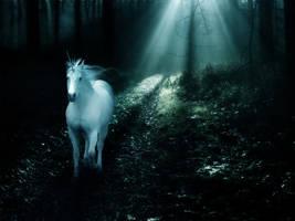Unicorn by Amethystana