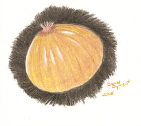 Onion by skullmage550