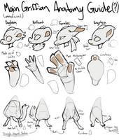 Main Griffian anatomy guide by MadLimbo