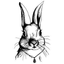 Rabbit by daniellekenyon