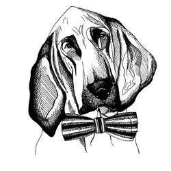 Bloodhound by daniellekenyon