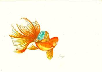 goldfish holding gemstone by kumi90