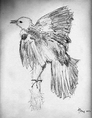 Bird (ballpoint pen) by assignation