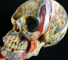Crazy Lace Agate Skull 001d by SKULLKRAFT