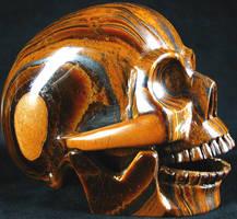 Gold Tigers Eye 001a by SKULLKRAFT