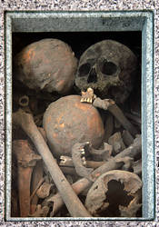 Box of Skulls and Bones by barefootliam-stock