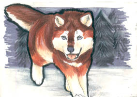 Out of the Woods - ACEO Trade by PoonieFox