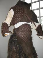 Faun armour closeup by Valimaa