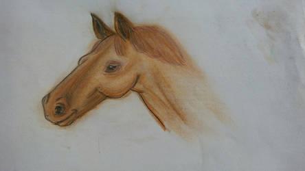 Horse by Rachabelle