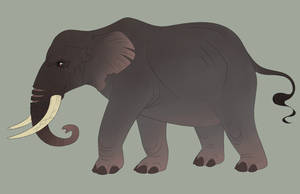 Elephant Commission by Ramala
