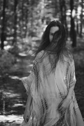 Into the Woods by pelleron