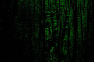 Curtains - Green by forkbat